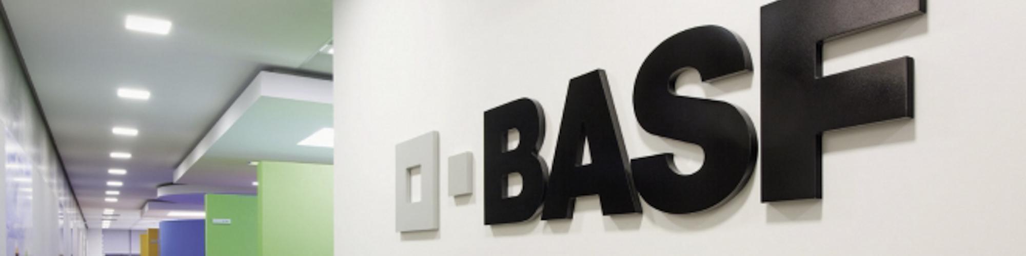 компоненты basf