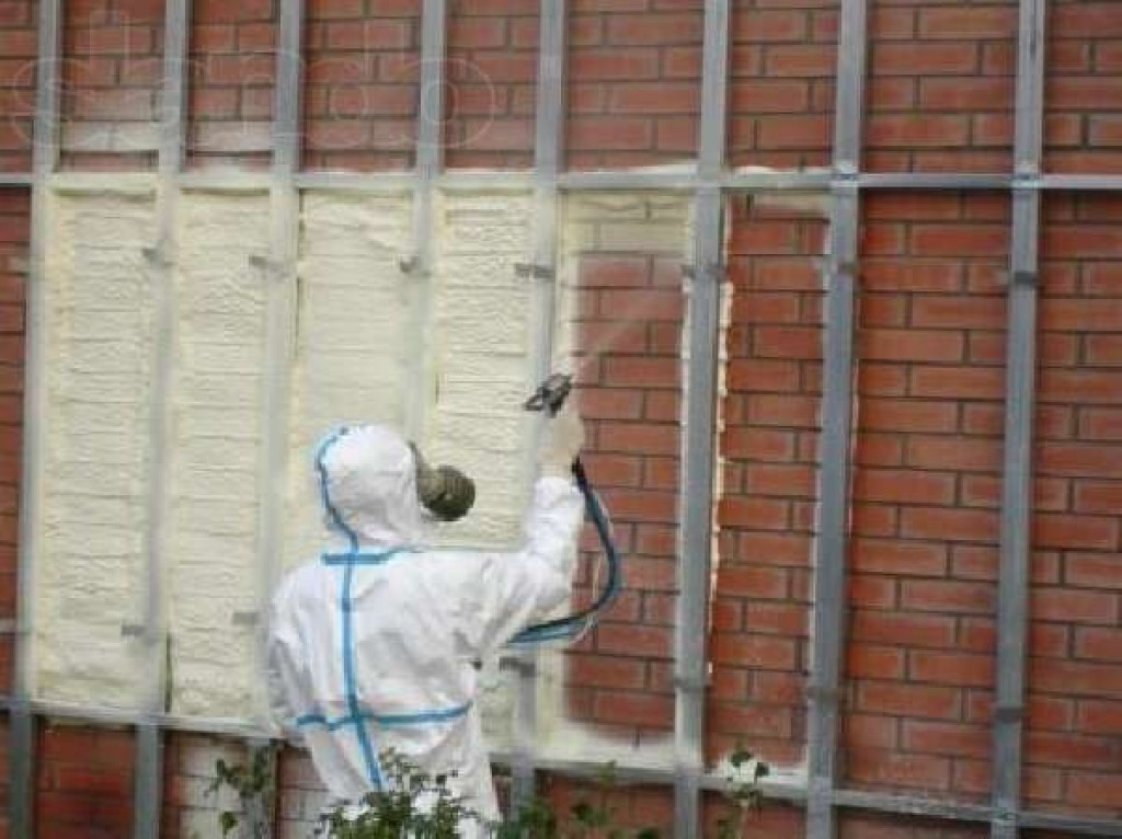 утепление дома цена обзоры Птичное (Москва)